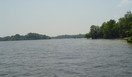 Lake Marion is a whopping huge beautiful body of water.