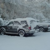 The cars in the snow